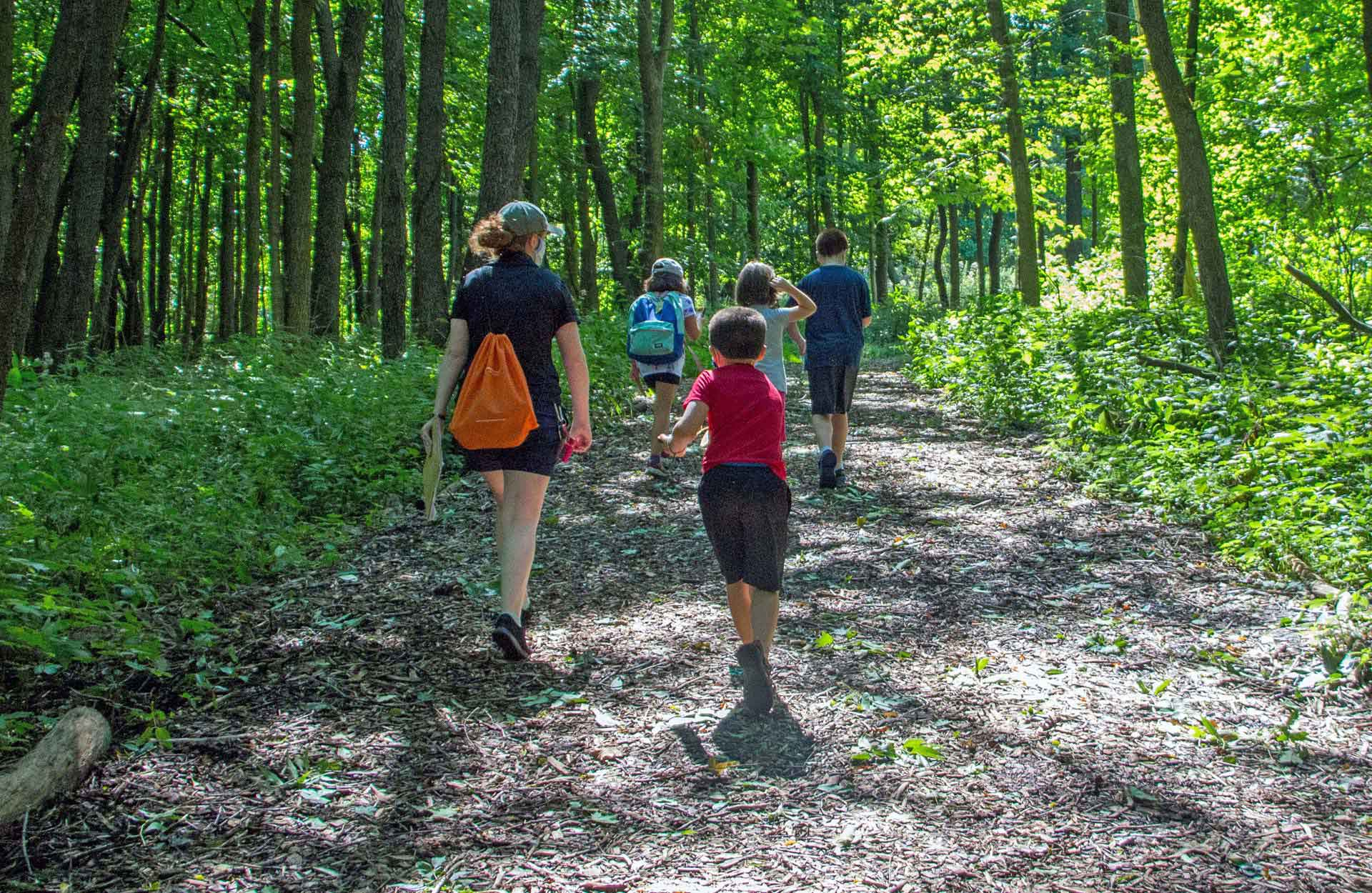 wooded trail at Hidden Oaks Conservation Area