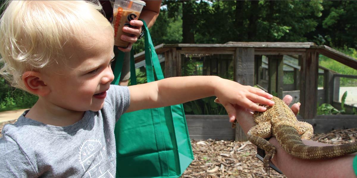 Animals at Hidden Oaks Nature Center